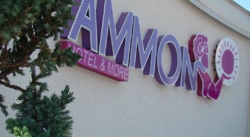 Ammon